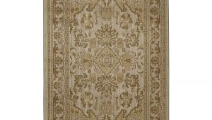 10 by 13 Rugs Home Decorators Collection Charisma Cashmere 10 Ft X 13 Ft area