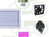 1000 Watt Led Grow Light Amazon Com Homenote Led Plant Grow Light for Indoor Plants 1000w