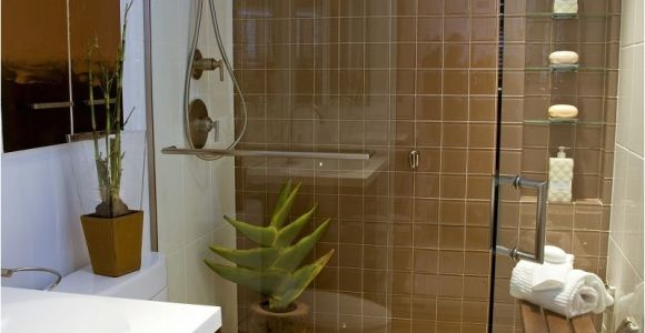 10×10 Bathroom Design Ideas 11 Awesome Type Small Bathroom Designs