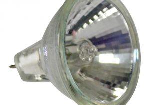 12 Volt Transformer Outdoor Lighting Alpine 10 Watt 12 Volt Mr11 Halogen Bulb Display Case Rbs1210 the