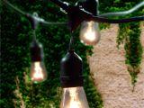 4 Foot Black Light Lemontec Commercial Grade Outdoor String Lights with 15 Hanging
