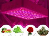 600 Watt Led Grow Light Amazon Com Castnoo Led Grow Light 600w Full Spectrum Indoor Plant