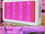 600 Watt Led Grow Light Full Spectrum Grow Light Kits 600w Led Grow Lights Flowering Plant