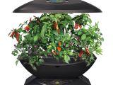 Aero Herb Garden Miracle Gro Aerogarden 7 Indoor Garden Dealducks