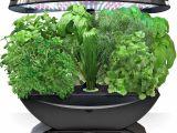 Aero Herb Garden Miracle Gro Aerogarden 7 Led with Gourmet Herb Seed Pod Kit