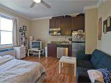 Affordable 1 Bedroom Apartments In the Bronx Lovely One Bedroom Apartment Craigslist Furnitureinredsea Com