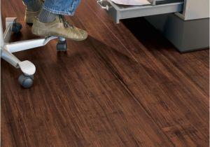 Bamboo Flooring and Dogs 17 Best Teragren Bamboo Flooring Nj New Jersey New York City