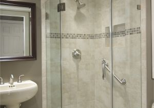 Basement Bathroom Design Ideas Basement Bathroom Ideas Bud Low Ceiling and for Small Space