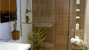 Bathroom Design Ideas for Small Bathrooms On A Budget 11 Awesome Type Small Bathroom Designs