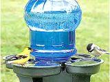 Bathtub Liner for Drinking Water Waterer – Bird Bath – the Avant Garden Shop