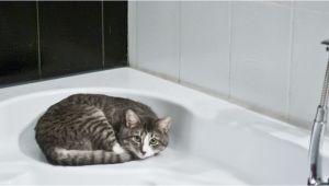 Bathtub Reglazing Utah Bath and Kitchen Repair and Resurfacing In Utah and