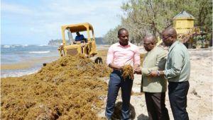 Bathtubs Trinidad Massive Clean Up Effort Under Way