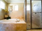Bathtubs with Jacuzzi Jets Bathroom Remodel