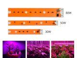 Battery Powered Grow Light Full Spectrum Led Plant Grow Light Led Cob Chip 30w 50w 80w 220v