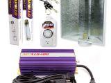 Best Hps Grow Lights Amazon Com Apollo Horticulture Glk400ls24 400 Watt Grow Light