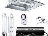 Best Hps Grow Lights Amazon Com Ipower 1000 Watt Hps Mh Digital Dimmable Grow Light