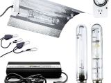 Best Hps Grow Lights Amazon Com Ipower 400 Watt Hps Mh Digital Dimmable Grow Light