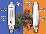 Best Hps Grow Lights Yield Lab 1000w Hps Mh Cool Tube Hood Reflector Grow Light Kit