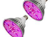 Best Led Grow Light for the Money Amazon Com 100w Led Plant Grow Light Bulb Full Spectrum 150 Leds