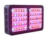 Best Led Grow Light for the Money Mastergrow 600w Full Spectrum Led Grow Light with Veg Bloom Modes