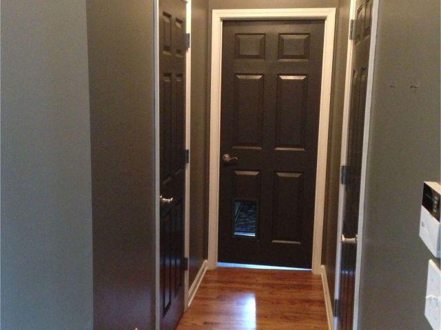 Best Paint For Interior Doors White Grey Walls And Black Brown Doors
