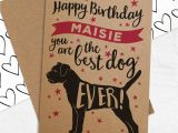 Best Rugs for Dogs Uk Personalised Best Dog Ever Birthday Card for Dogs by Well Bred