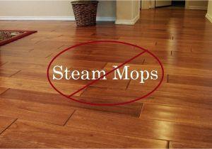 Best Shark Hardwood Floor Cleaner Steam Cleaners for Hardwood Floors Podemosleganes