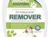Best Type Of Rugs for Dogs Amazon Com Amaziing solutions Pet Odor Eliminator and Stain Remover