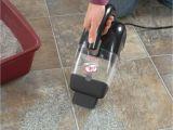 Bissell Poweredge Pet Hard Floor Corded Vacuum 81l2a Bissel Pet Hair Eraser Handheld Vacuum Corded 33a1 Review Pet Hair
