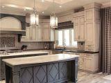 Black Kitchen Cabinets Ideas Kitchen Design Ideas Dark Cabinets Best Black Kitchen Cabinets