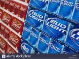 Bud Light 24 Pack Busch Light Stock Photos Busch Light Stock Images Alamy
