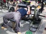 Cambered Bench Bar Cambered Squat Bar Bench Press Elite Fts