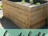 Cedar Boards for Raised Garden Beds Diy Raised Garden Beds Using Cedar Boards Pinterest Cedar Fence