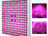 Cheap Led Grow Lights for Indoor Plants 45w Led Grow Light Full Spectrum Uv Ir Red Blue 225 Leds Indoor