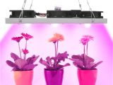 Cheap Led Grow Lights for Indoor Plants Cob Led Grow Light Full Spectrum Actual Power 50w 100w 150w 200w Led