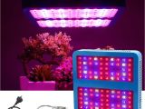 Cheap Led Grow Lights for Indoor Plants Double Chips Led Ir Uv Plant Grow Lights 1000w Full Spectrum Green