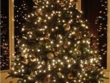 Christmas Light Spools Find the Best Diy Christmas ornaments Collections Economyinnbeebe Com