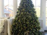 Christmas Light Spools Quality Christmas ornaments Amazing Outdoor Christmas Light Timer
