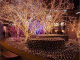 Christmas Lights that Play Music Light Tree Led String Lights 100leds with Eu Us Plug for Christmas