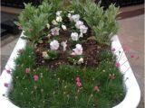 Clawfoot Bathtub Garden 24 Best Bathtub Flower Beds Images On Pinterest