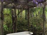 Clawfoot Bathtub Garden 33 Best Outdoor Clawfoot Bathtub Images On Pinterest