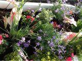 Clawfoot Bathtub Garden Clawfoot Tub with Water Pump Garden attraction