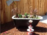 Clawfoot Tub Garden 1000 Images About Bathtub Garden On Pinterest
