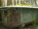 Clawfoot Tub Garden 11 Best Clawfoot Tub Garden Images On Pinterest