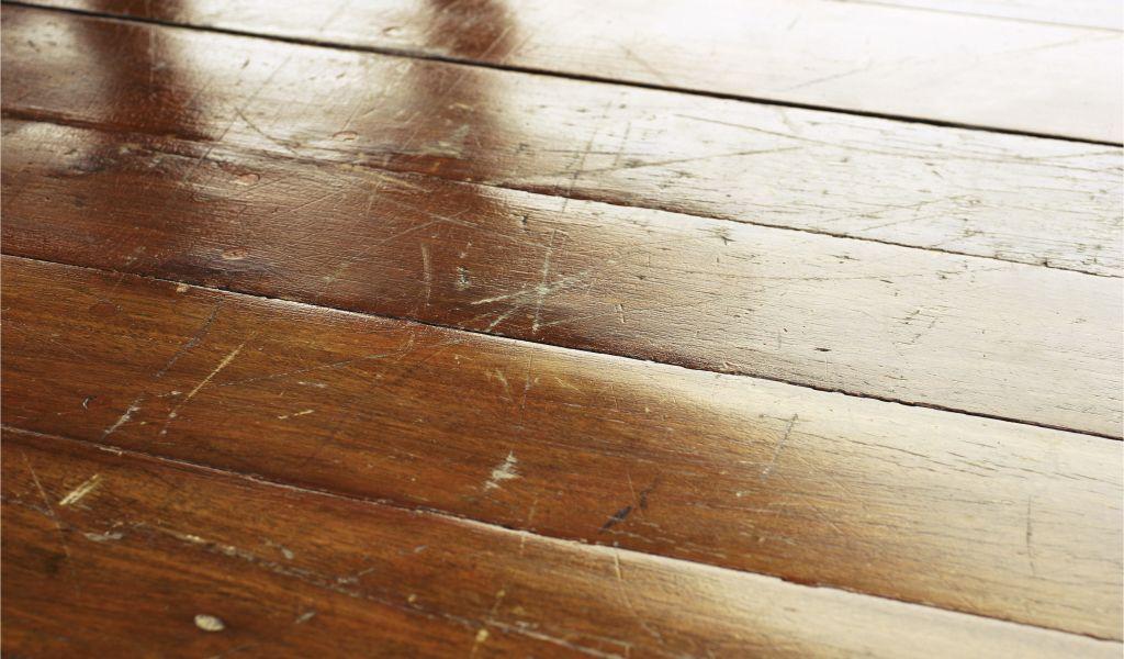 Clean Dog Pee On Wood Floor Hardwood Floor Cleaning Hardwood Floor