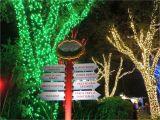 Coca Cola Busch Gardens Discount Delightful Coca Cola Busch Gardens Discount 2 Zannaland