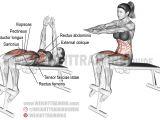 Decline Bench Sit Ups Decline Sit Up A Compound Exercise Target Muscle Rectus Abdominis