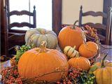 Decorative Pumpkins for Sale 208 Best Simply Elegant Pumpkins Images On Pinterest Fall