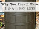 Decorative Rain Collection Barrels Rainwater Harvesting Rainwater Harvesting Barrels and Rain