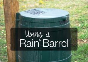 Decorative Rain Collection Barrels Using and Choosing A Rain Barrel Pinterest Sustainability